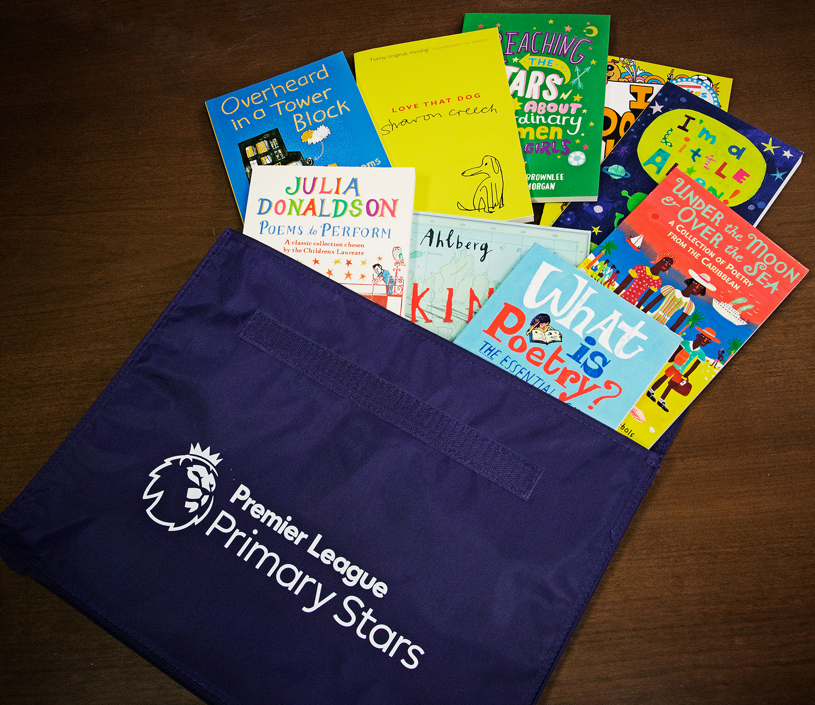 Primary Stars books